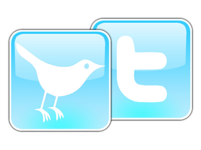 Image of the twitter Icon